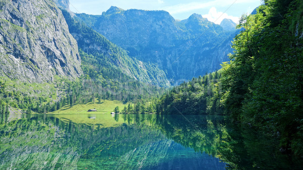 Obersee Bavaria Germany Stock photo © magann