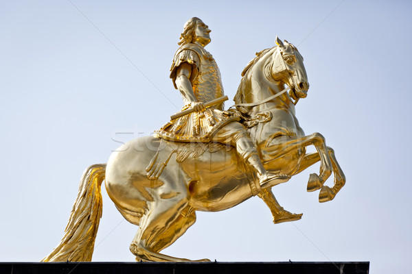 golden rider Stock photo © magann