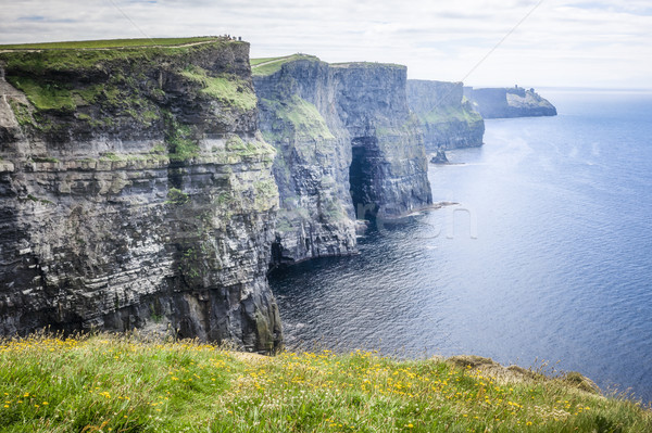 Cliffs of Moher Ireland Stock photo © magann