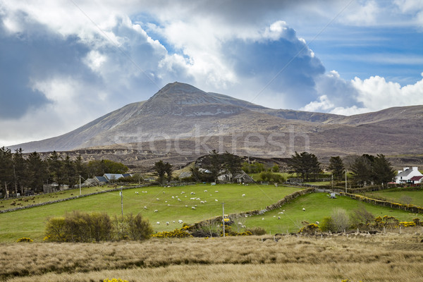 Paysage paysages Irlande image nature bleu Photo stock © magann