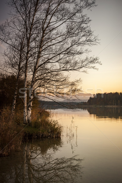 evening at the Lake near Iffeldorf Bavaria Germany Stock photo © magann