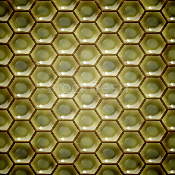 Méhsejt kép szép háttér keret munkás Stock fotó © magann
