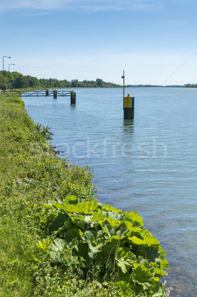 river Rhine Stock photo © magann