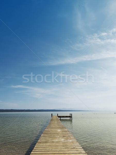 Vieux lac Allemagne eau bois nature Photo stock © magann