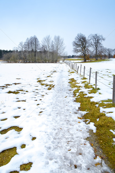 winter scenery Osterseen Stock photo © magann