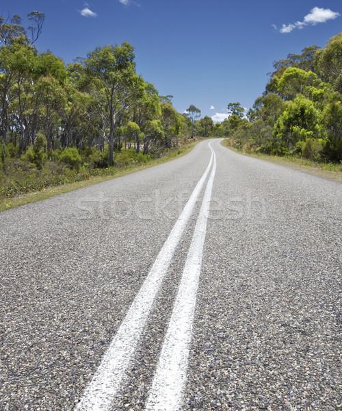 Weg afbeelding Australië boom bos straat Stockfoto © magann
