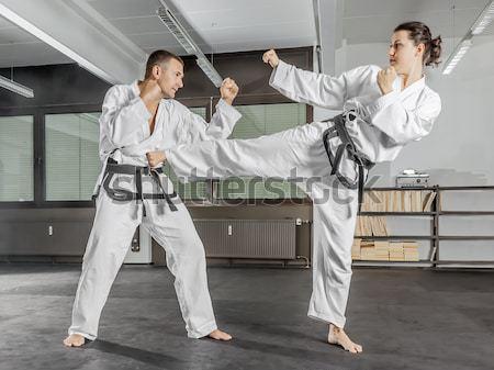 Taekwondo görüntü dövüş sanatları adam spor Stok fotoğraf © magann