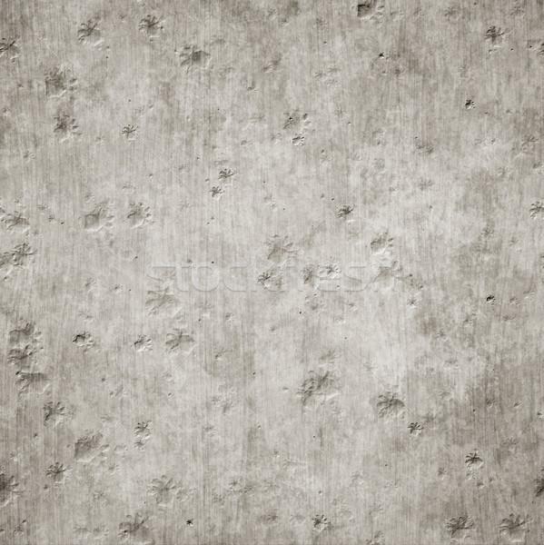 grunge concrete texture background Stock photo © magann