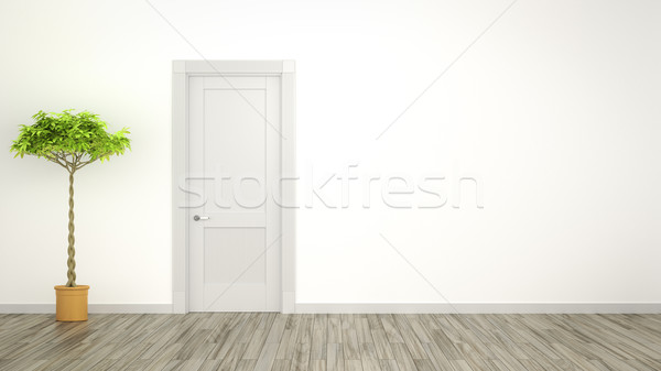Kamer plant ruimte home deur achtergrond Stockfoto © magann