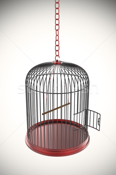 Nyitva madárkalitka 3D renderelt kép ajtó Stock fotó © magraphics