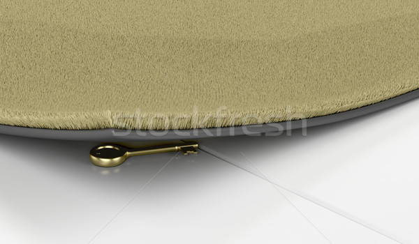 Golden key under the doormat Stock photo © magraphics