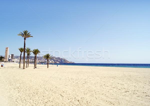ビーチ 風景 手のひら 旅行 砂 ヨーロッパ ストックフォト © magraphics