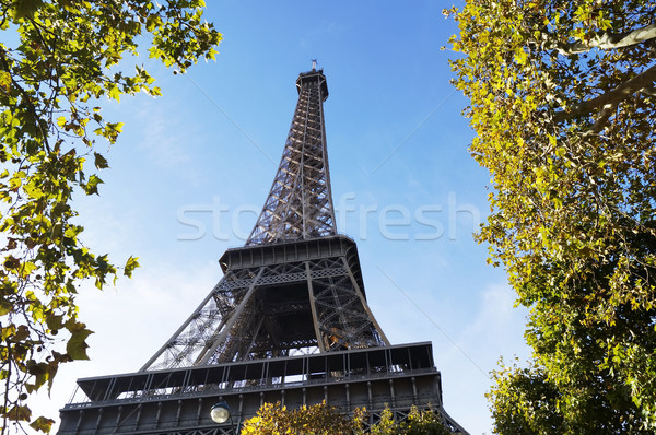 Eiffel Tower in Paris Stock photo © magraphics