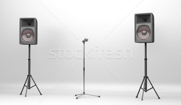 Koncert színpad hangfalak mikrofon kettő nagy Stock fotó © magraphics