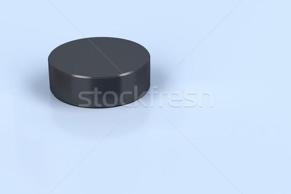 Hockey puck on ice  Stock photo © magraphics