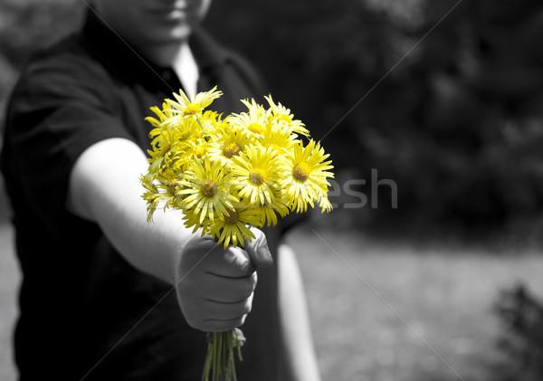 Stock photo: Yellow flowers