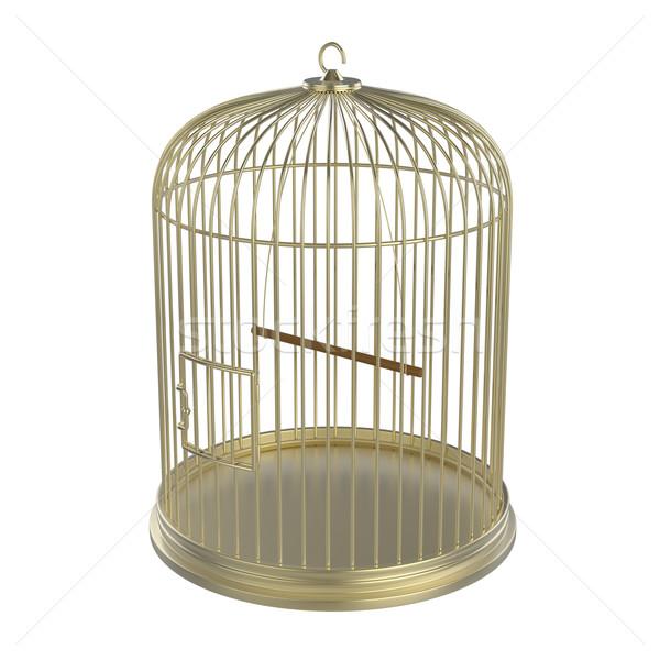 Altın kuş kafesi yalıtılmış beyaz kapı altın Stok fotoğraf © magraphics