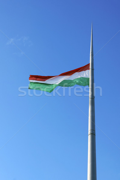 Flag of Hungary Stock photo © magraphics