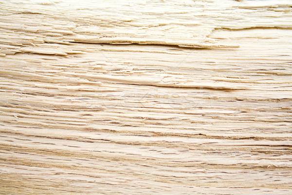 オーク 抽象的な テクスチャ ツリー 木材 ストックフォト © magraphics