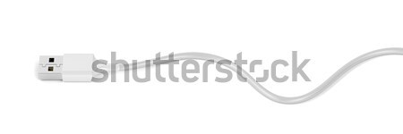 Usb kablo beyaz tel fiş elektronik Stok fotoğraf © magraphics