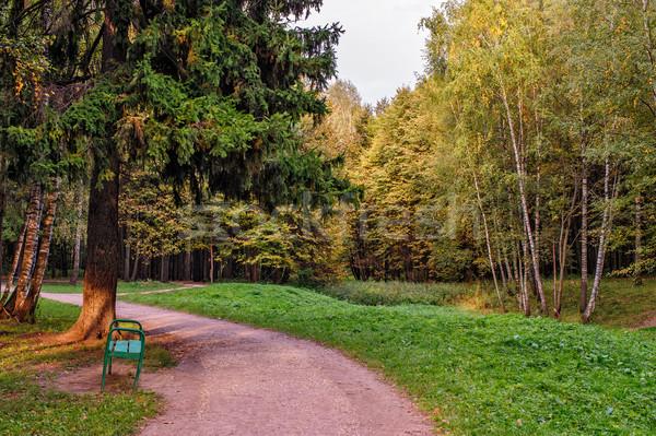 Ağaçlar sonbahar renkler park ağaç orman Stok fotoğraf © mahout