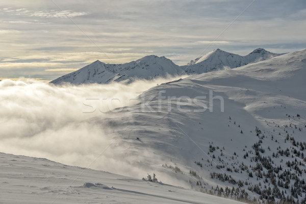 Mountain landscape in Austrian Alps Stock photo © mahout