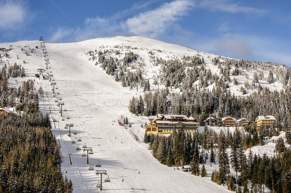 Esquí Resort alpes esquí forestales Foto stock © mahout