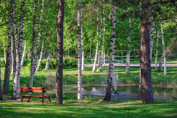 Détendre lieu étang été parc belle Photo stock © mahout