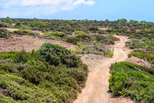 Chipre paisaje rural carretera cielo Foto stock © mahout
