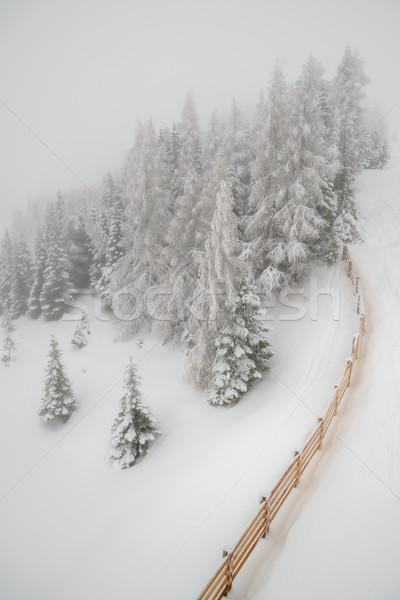 Nevadas montana invierno forestales hermosa paisaje Foto stock © mahout