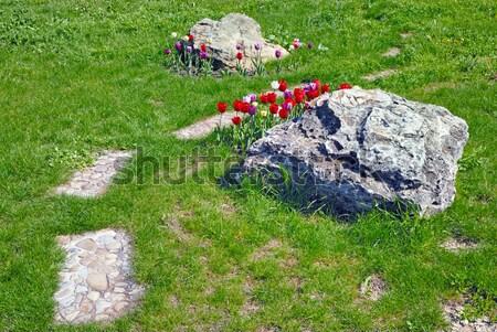 Pedra caminho flores gramado grama verde flor Foto stock © mahout