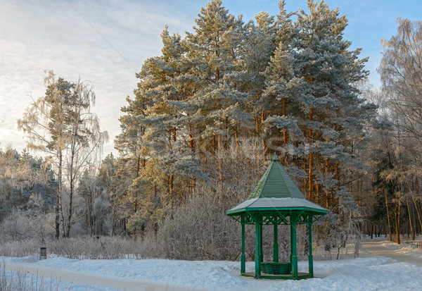 Wooden arbour covered with hoarfrost in winter garden Stock photo © mahout