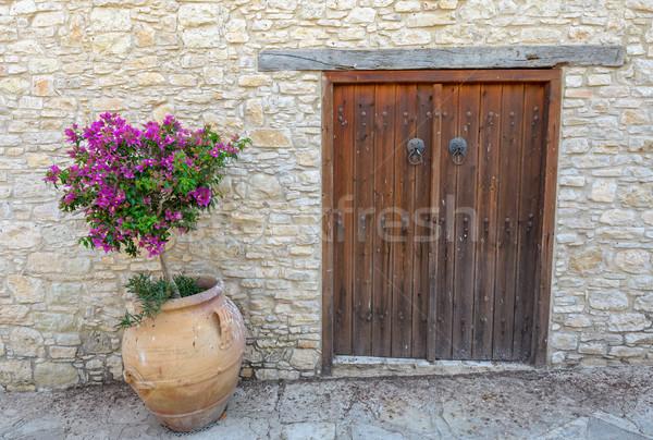 öreg ajtó fal téglafal virág épület Stock fotó © mahout