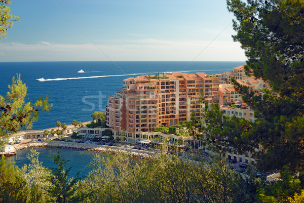 Modern apartment houses in Monte Carlo Stock photo © mahout