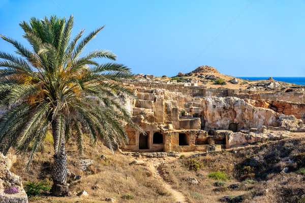 Régészeti múzeum Ciprus város tenger utazás Stock fotó © mahout