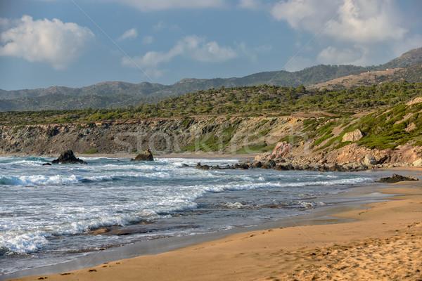 海岸 半島 キプロス ビーチ 公園 風景 ストックフォト © mahout