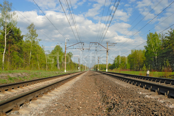 Spoorweg hemel wolken bos natuur metaal Stockfoto © mahout