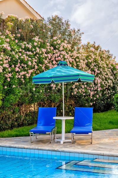 úszómedence székek napernyő égbolt virág fa Stock fotó © mahout