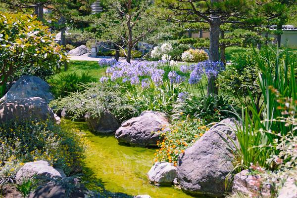 Belo jardim córrego flor água natureza Foto stock © mahout