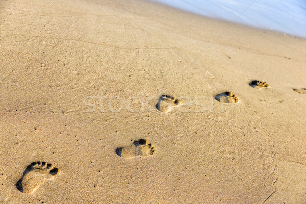 Footsteps on the sand Stock photo © mahout