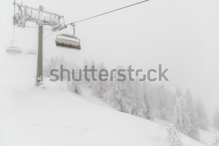 Sneeuwstorm ski resort bos natuur sneeuw Stockfoto © mahout