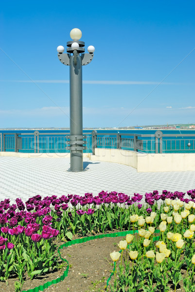 Lamp post and flower bed on quay Stock photo © mahout