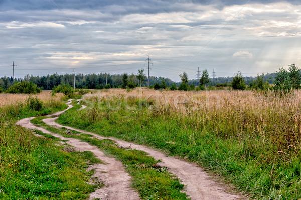 Landelijk weg grasveld elektrische macht Stockfoto © mahout