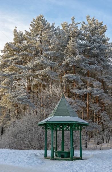 зима саду деревья покрытый дерево Сток-фото © mahout