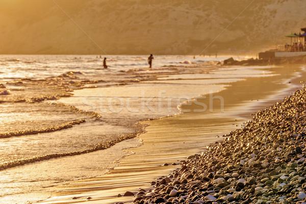 Sunset on beach Stock photo © mahout