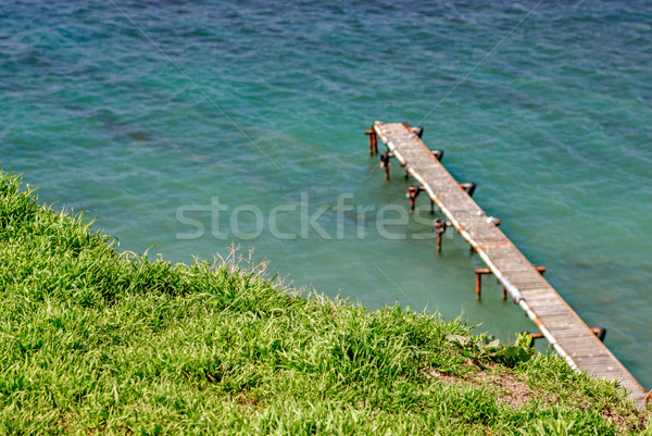 Green grass and sea with pier Stock photo © mahout