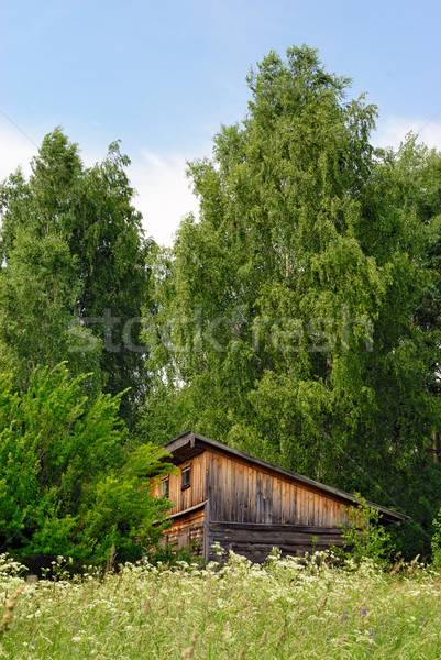Old shed on the fringe of the forest Stock photo © mahout