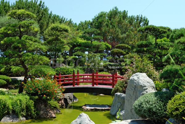 Japanese Garden Stock photo © mahout