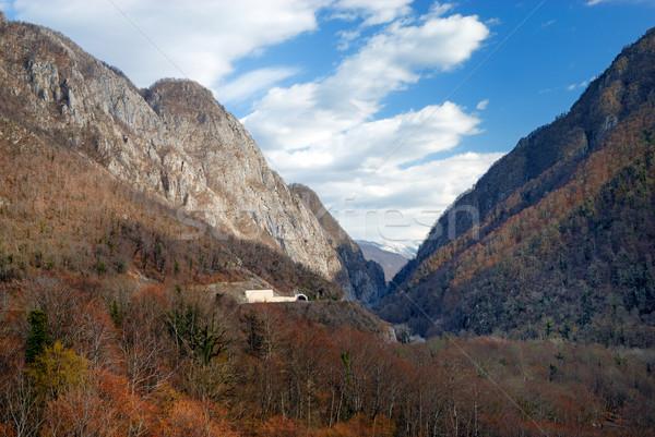 Mountain gorge Stock photo © mahout