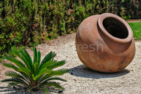 Landscape design with vintage amphora Stock photo © mahout